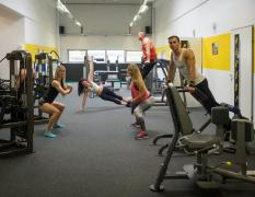 Athletics Reiterer Fitness